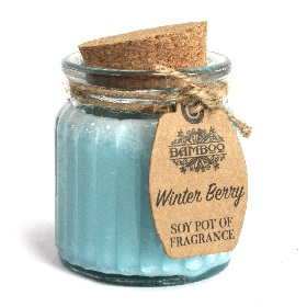 Bougie parfumée de cire de soja fruit rouge d'hiver